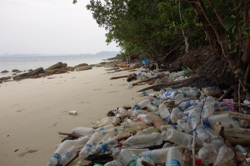 Strand på Sepanggar Island, Borneo.